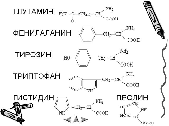 0011-011-Glutamin-fenilalanin-tirozin-triptofan-gistidin-prolin